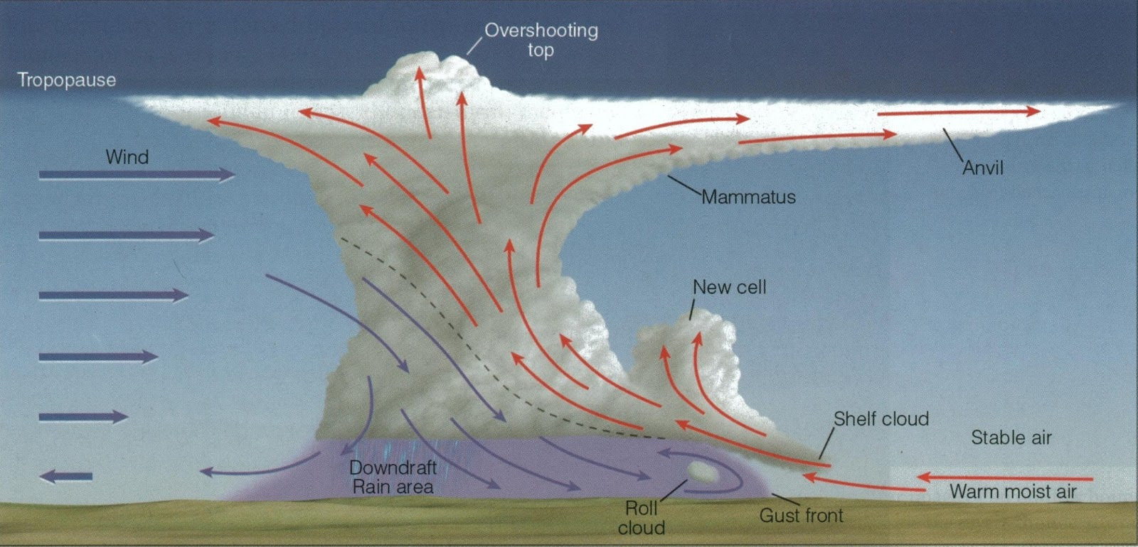 tornado supercell diagram honeywell wifi thermostat wiring charlie 39s weather forecasts the graceful apocalypse part