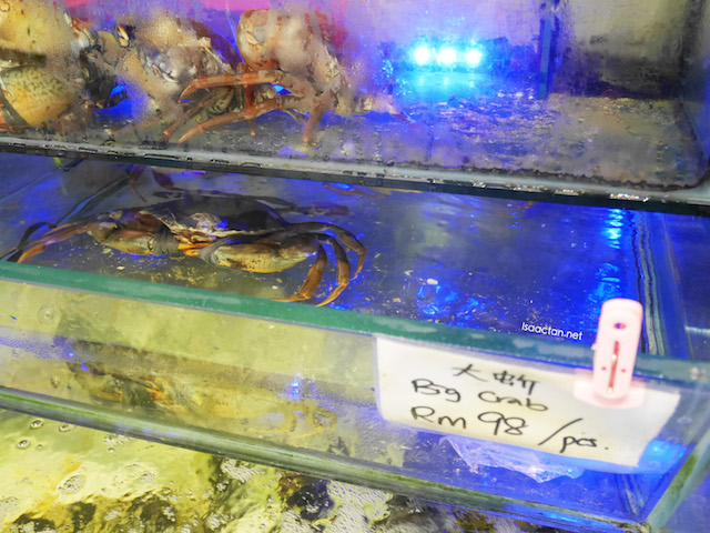 Live, big crabs in water tanks