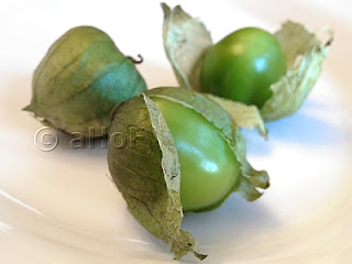 Tomatillos of the Nightshade Family