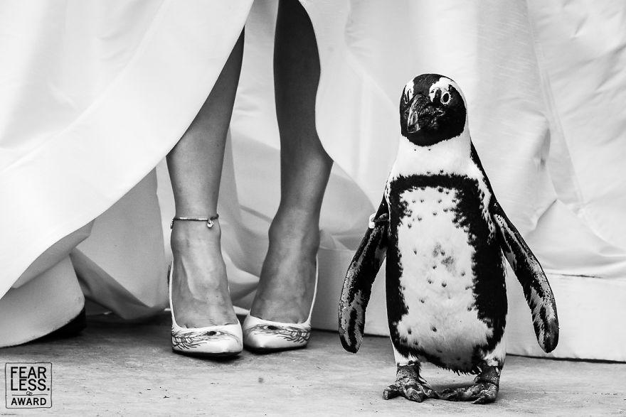 le-best-foto-di-nozze-26