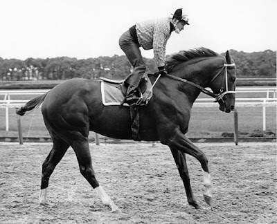 Secretariat, morning gallop,