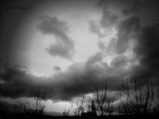 Skies, trees and clouds in december 2, 2016; edited in b&w (below)