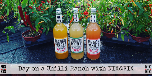 Day on a chilli ranch in Bedfordshire with drinks brand NIX&KIX