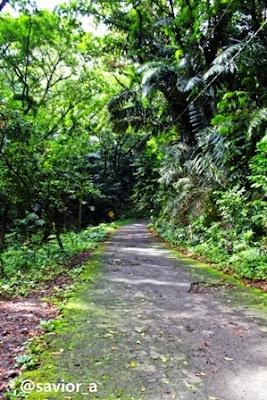 akcayatour, Wana Wisata Penggaron, Travel Malang Semarang, Travel Semarang Malang, Wisata Semarang