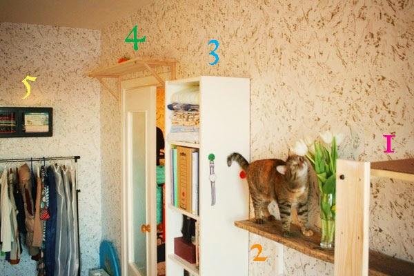 уголок для кота