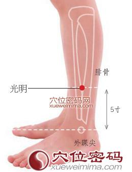 光明穴位 | 光明穴痛位置 - 穴道按摩經絡圖解 | Source:xueweitu.iiyun.com