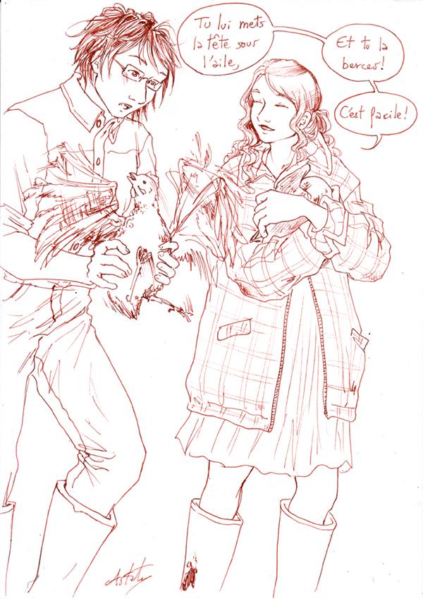 Comment endormir les poules - Matthieu et Cécile.