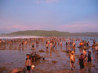 Bau Nyale Tradisi Suku Sasak - Pulau Lombok Indonesia ...
