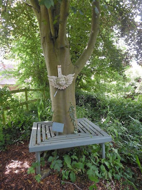 ławka przy drzewie