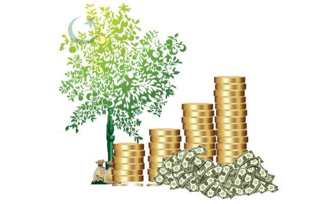 البنوك التشاركية بالمغرب ماذا تعرف عنها