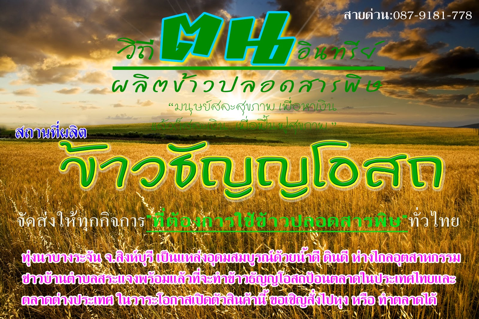 https://www.facebook.com/organicricesingburi/photos/pb.149446338511559.-2207520000.1394249836./484767924979397/?type=3&theater