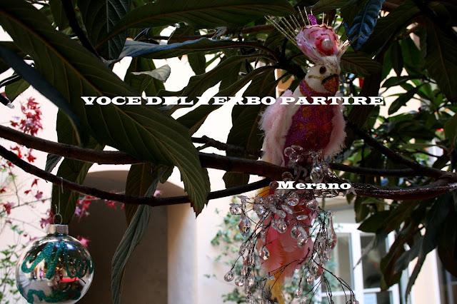 DOMENICA D'AVVENTO A MERANO: UCCELLI IN STRASS
