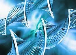 pengertian bioteknolodi