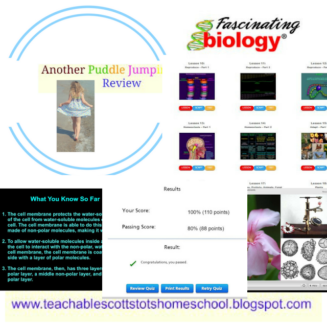 Review, #hsreviews, #Homeschool, #chemistry, #biology, #physics, #highschool, Homeschool chemistry, homeschool biology, homeschool physic, online chemistry, online biology, online physics, high school science, chemistry curriculum, biology curriculum, physics curriculum