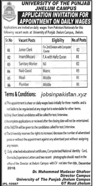 Advertisement for University of Punjab Jobs 2018