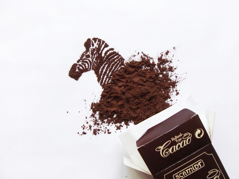 22-Zebra-Ioana-Vanc-Food-Art-using-Chocolate-Vegetables-and-Fruit-www-designstack-co