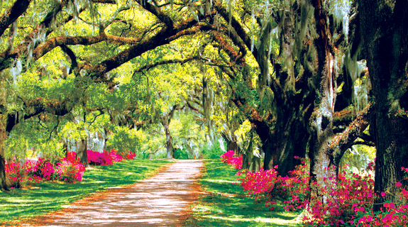 Romantic anniversary getaways in Savannah in the southern United States