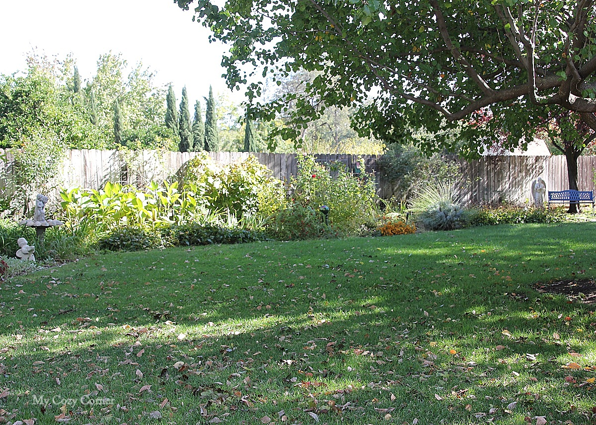 Lawn Mower Picks Leaves