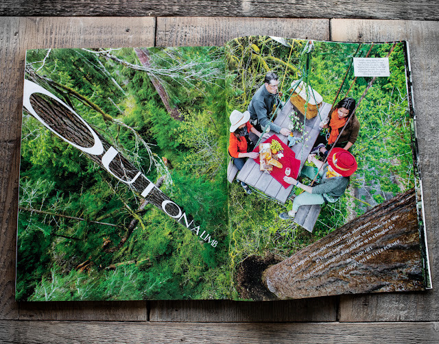 Picnic table dining up in an old growth tree, Departures Magazine.