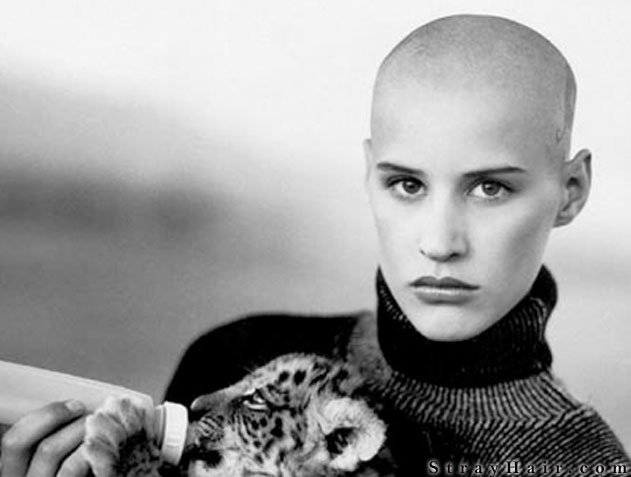 shaved head models