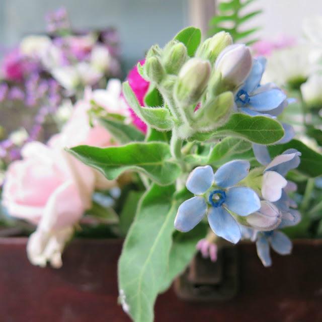 זר פרחים צבעוני בהשקה של erdem ו h&m