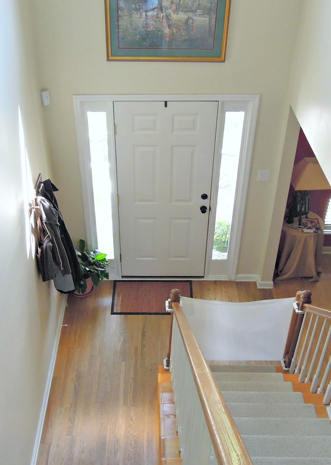 Front Door Curtains