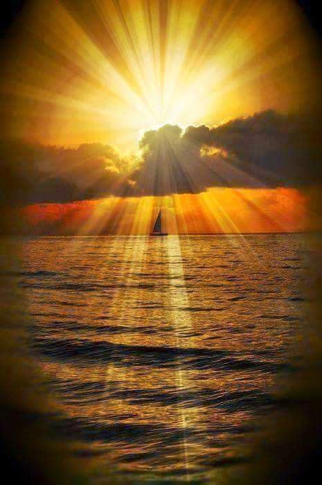 Espera no Senhor, anima-te, e ele fortalecerá o teu coração; espera, pois, no Senhor.