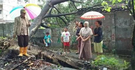 Jika Hujan, Padang Langganan Banjir, Ini Penyebabnya Menurut Wawako Emzalmi