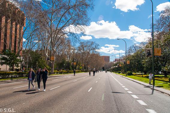 Paseo del Prado. Maneras de moverse por Madrid