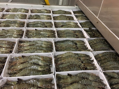 Asian Tiger Shrimp Suppliers Seafood Product