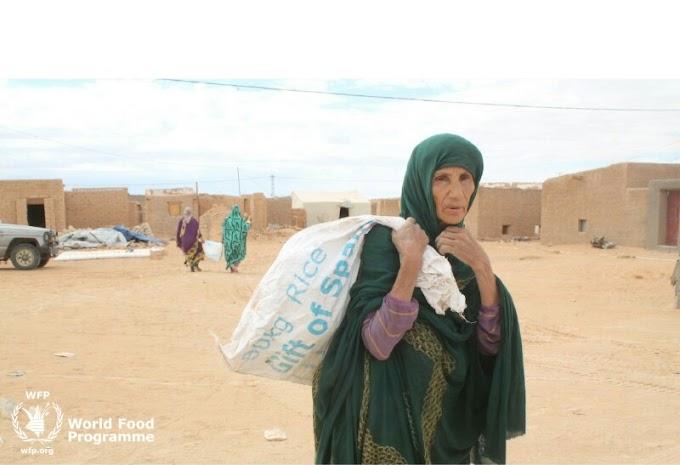 El impacto del Covid-19 en los campos de refugiados, la seguridad alimentaria bajo amenaza
