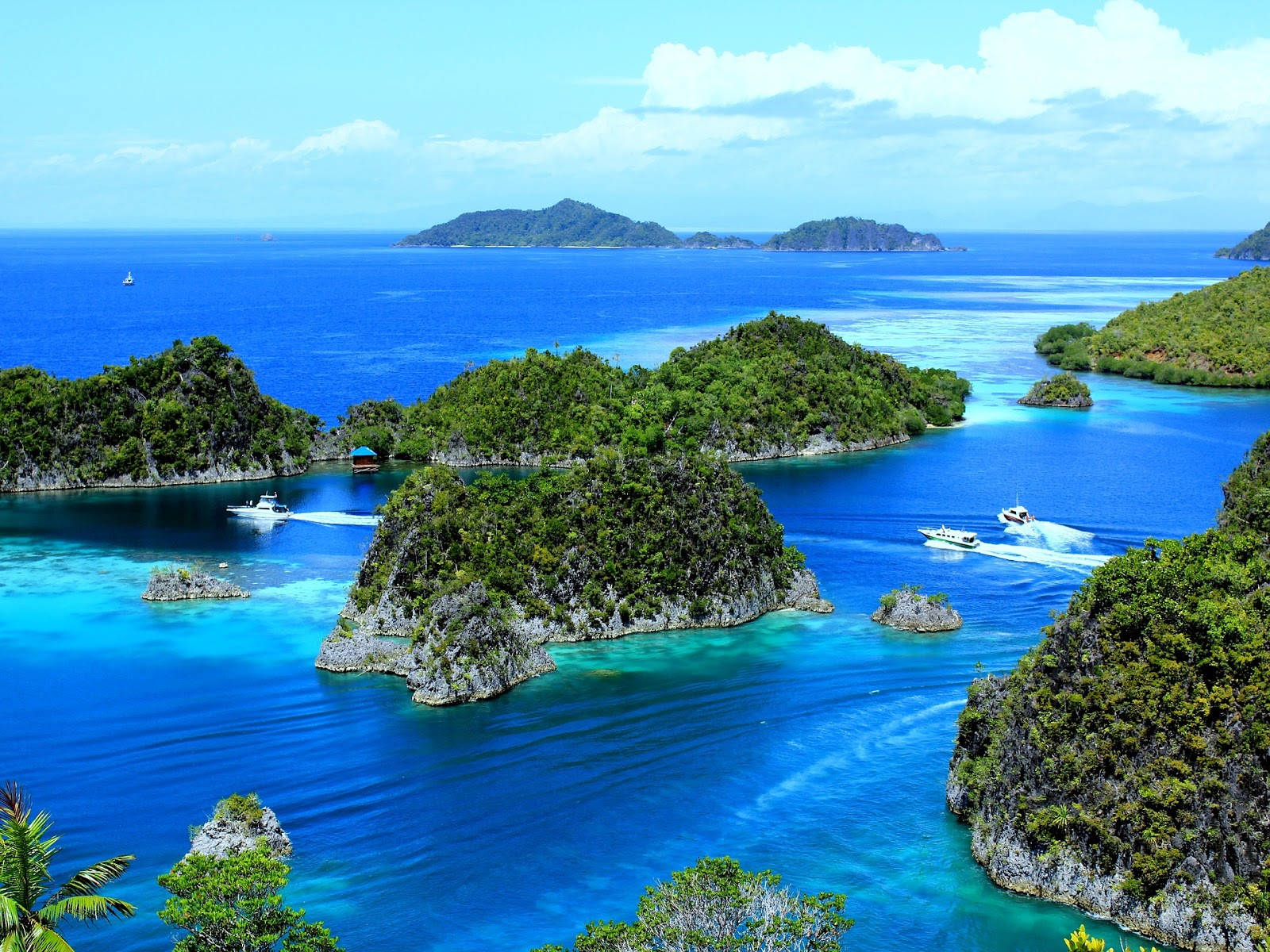 Tak Harus Ke Papua Pesona Raja Ampat Bisa Dinikmati Di