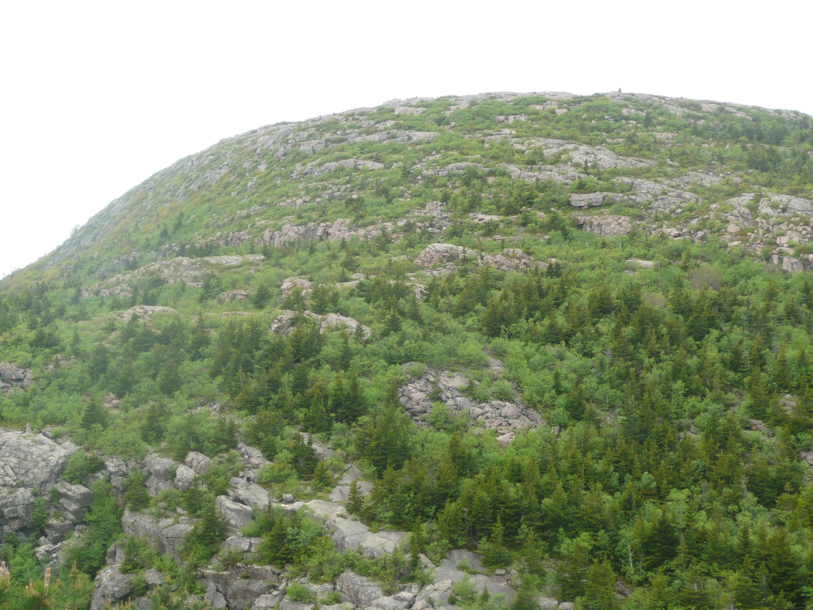 tips from chip: hike – cadillac mountain gorge path (east approach