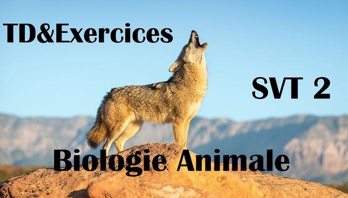 TD et Exercices corrigés de Biologie Animales SVT Semestre 2 PDF