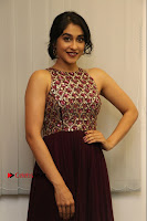 Actress Regina Candra Latest Stills in Maroon Long Dress at Saravanan Irukka Bayamaen Movie Success Meet .COM 0037.jpg