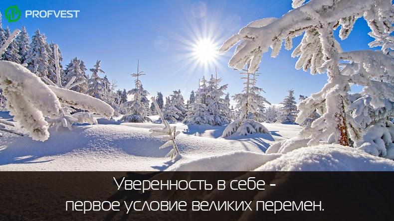 Оптимальный ПАММ-портфель на февраль 2015 года