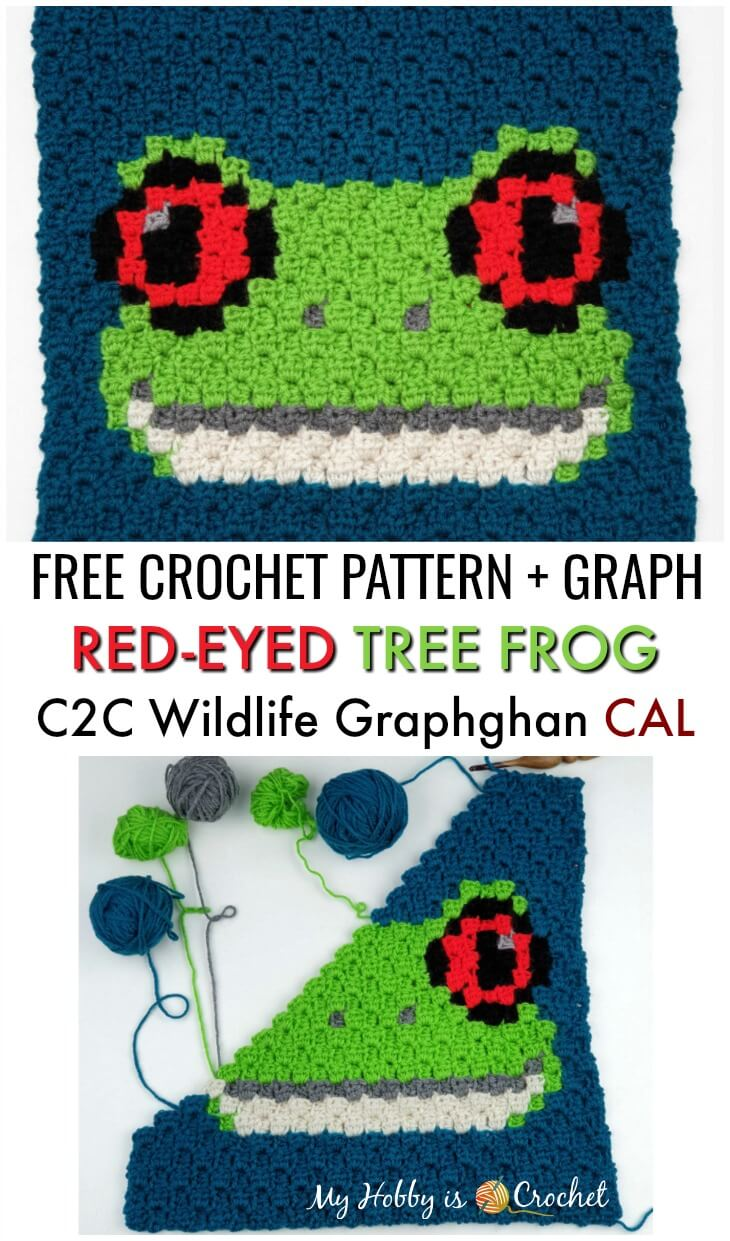 Red-eyed Tree Frog C2C Square - Free Crochet Pattern