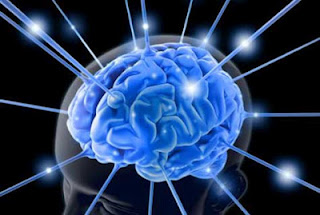 Good leaders have different brain waves