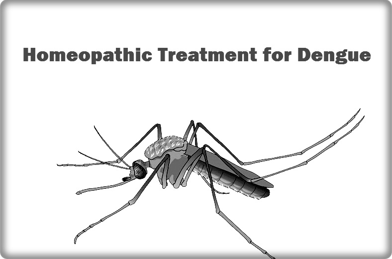 Homeopathic Treatment for Dengue Fever | Homeopathic