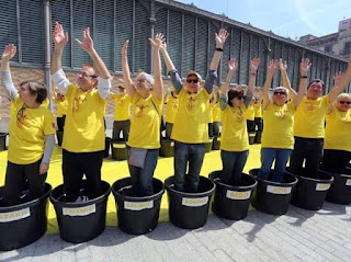 catalanistas, macetas, amarillo, catalans molt ben plantats