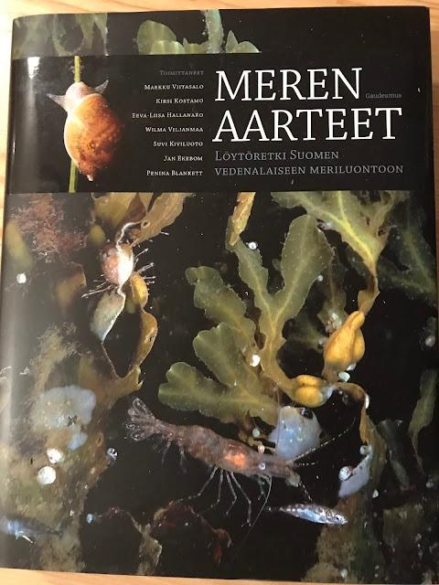 Kansikuva Meren aarteet -kirjasta.