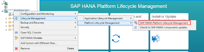 SAP HANA Revision Update