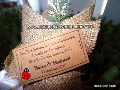Burcu Mehmet nikah bitkisi İstanbul 3