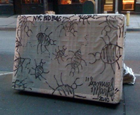 Bed Bugs Begone: Best Anti-Bedbug Tips |
