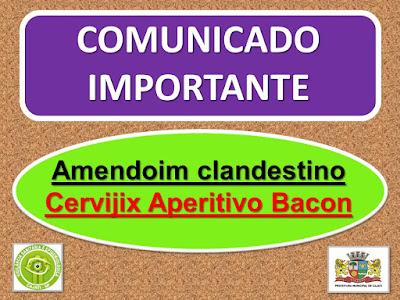 VIGILÂNCIA ALERTA: AMENDOIM CLANDESTINO