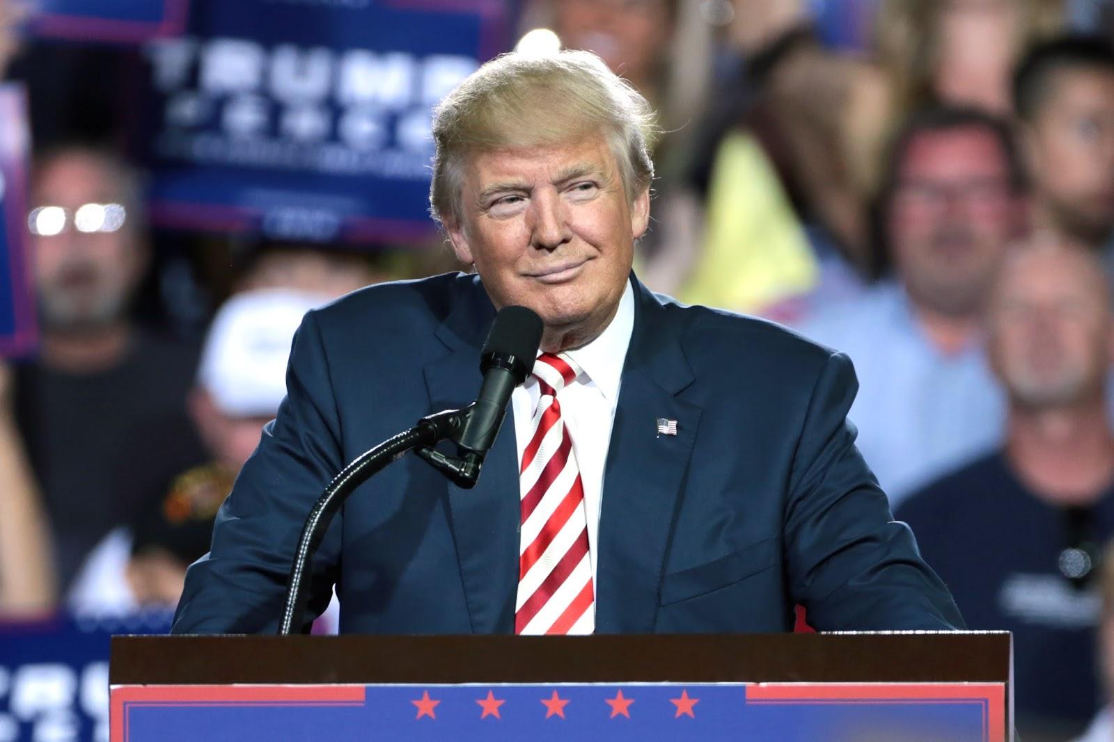 Donald Trump Afd