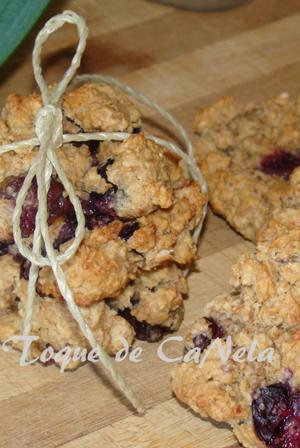 recetario-dulce-19-recetas-arandanos-cookies-avena