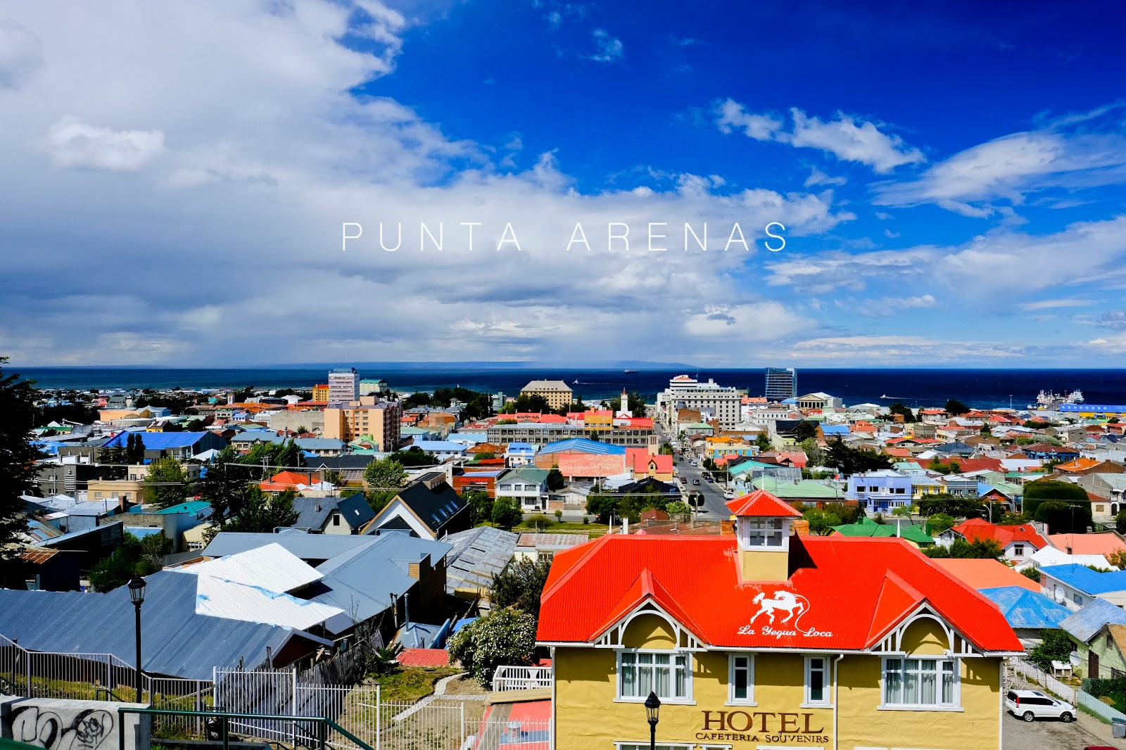 punta arenas latino personals For me, punta arenas was only a stopover, but i did take the for me, punta arenas was only a stopover, but i did take the time to walk around the center a bit, kissed the indio's toe, visit the museo and go up to the mirador.