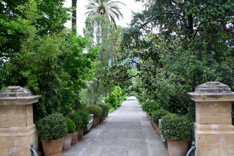 http://www.elblogdelatabla.com/2016/06/jardin-botanico-soller-mallorca.html