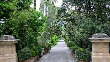 Jardín Botánico de Sóller en Mallorca